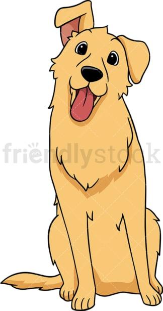 Golden retriever dog head tilt. PNG - JPG and vector EPS (infinitely scalable).