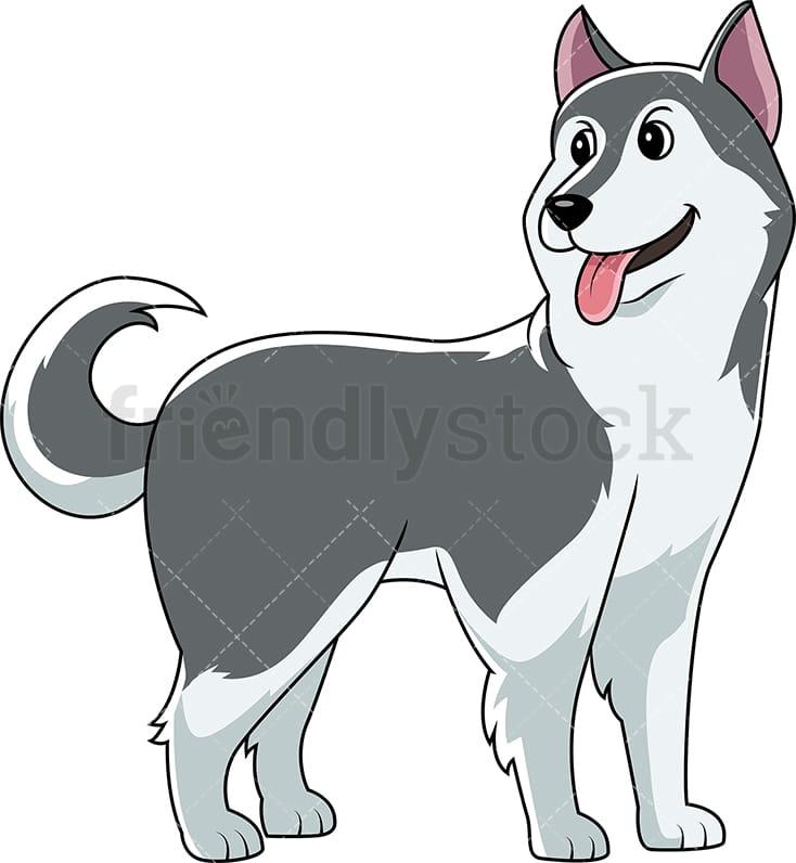 Cute Siberian Husky Dog Looking Backwards Cartoon Clipart Vector Friendlystock