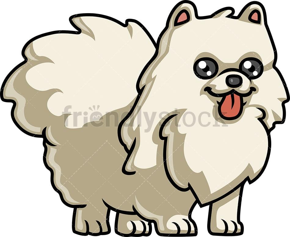 Playful Pomeranian Dog