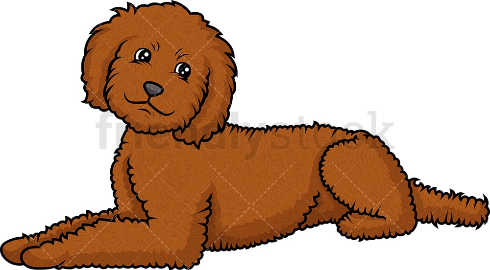 Labradoodle Lying Down Cartoon Clipart