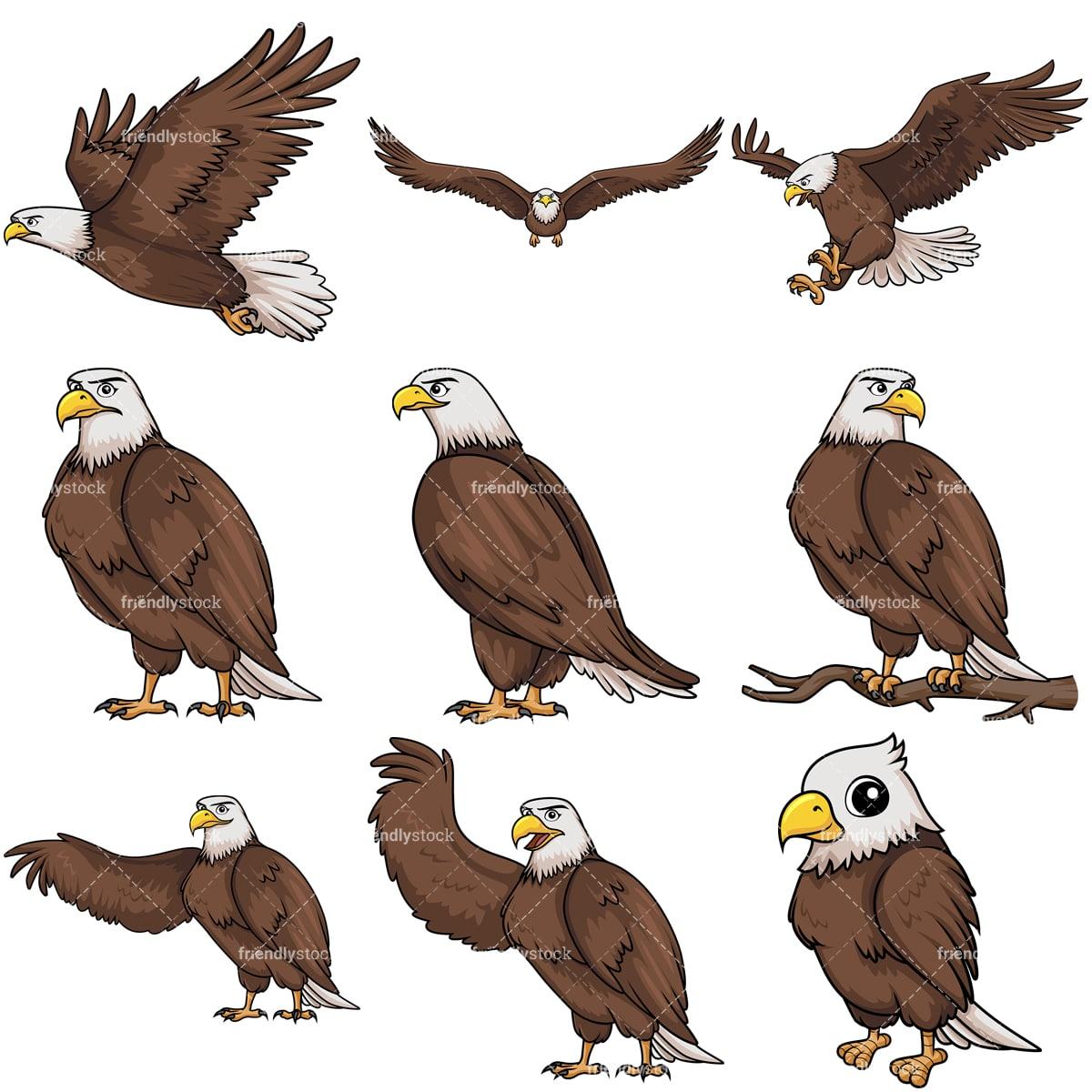 bald eagle cartoon vector clipart - friendlystock  friendlystock