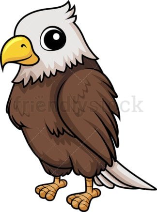 Baby bald eagle. PNG - JPG and vector EPS (infinitely scalable).