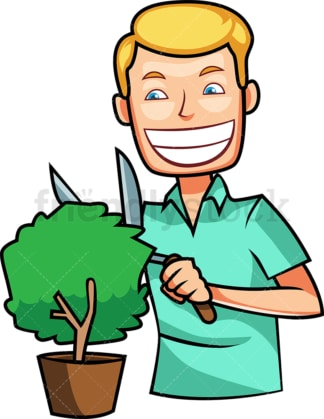 Man trimming a small shrub. PNG - JPG and vector EPS file formats (infinitely scalable). Image isolated on transparent background.